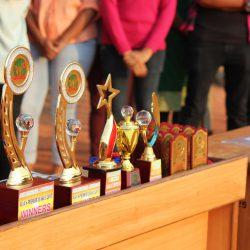 Trophies of APL-2017
